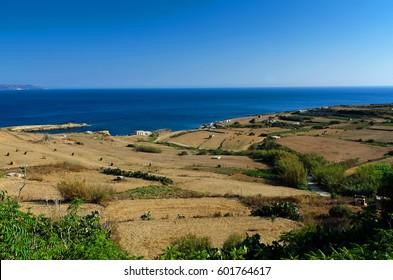 Hay rolls and landscape, Gozo island, Malta.