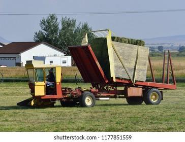 Hay stacker closing on bales