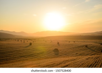 hay stock on a Golden field against the background of a Golden sunset, straw stacks lying in an agricultural field after harvest, autumn, sunset time