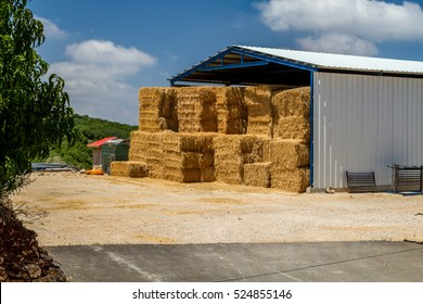 The hay storage shed full of bales hay on farm, agricultural kibbutz in Upper Galilee, Israel