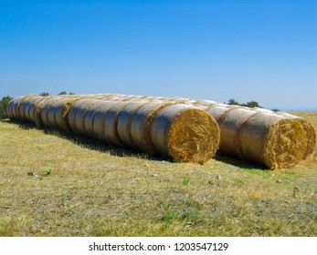 Hay and straw bales at the end of summer in a field in Italy