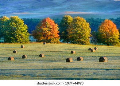 HAYBALES  in a field, Autumn colours, Underberg, kwazulu Natal, South Africa.