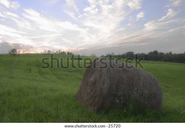 Haybales in the late afternoon.