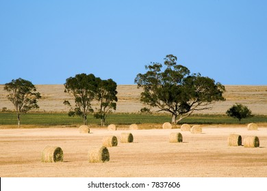 Haybales in a paddock in outback Australia