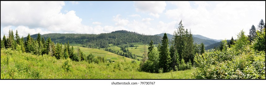 Hayfield in Carpathian mountains panorama