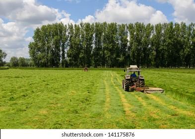 Haymaking tractors in Flanders fields in spring