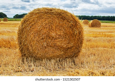 Haystack agriculture field landscape. Agriculture field haystacks. rural yellow field