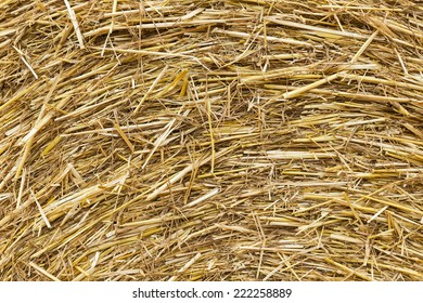 Haystack closeup can use as a background