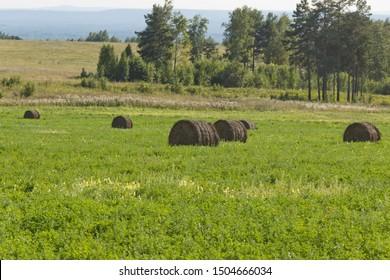 Haystack harvest agriculture farm field. Haystack rock on agricultural field. Farmland haystack view. Haystack field scene.