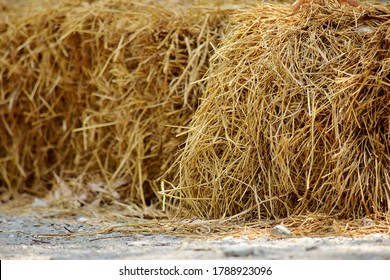 Haystack, hay straw, Bale of hay group, dry grass (hay), dry straw on the road.