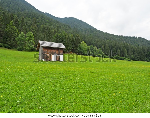 Haystack on meadow in the austrian Alps