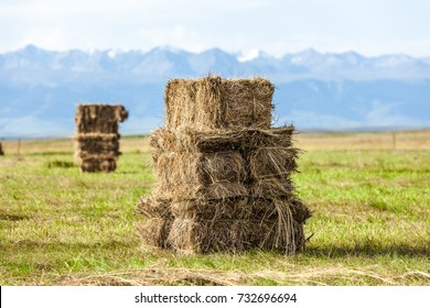 Haystack on the prairie
