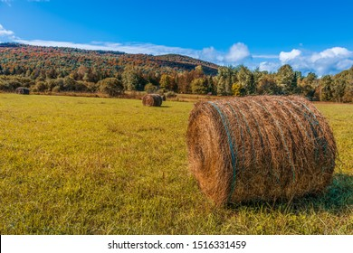 Haystack rolls on gold agriculture field. Beautiful field haystack rolls in autumn season. Haystacks harvest in fall landscape. Amazing view with rolled hay stacks in autumnal season.