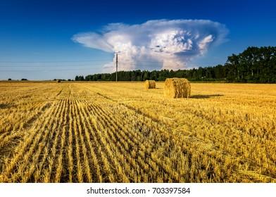 haystacks in autumn field, rural, Russia, Ural, September