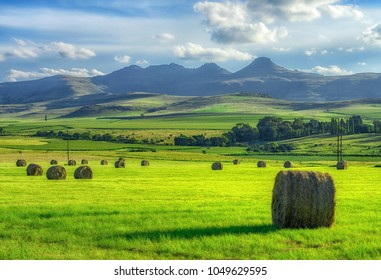 Haystacks in green grass with mountains in the background with beautiful blue sky in South Africa near Clarens