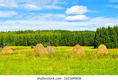 Haystacks on agriculture farm field. Agriculture farm field haystacks. Haystacks in field