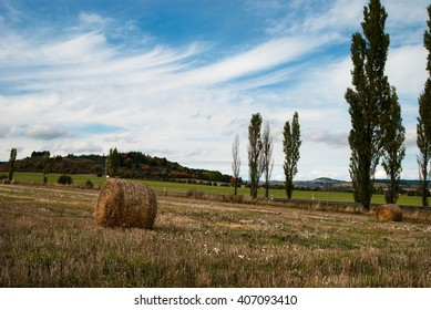 Haystacks on a grassy field on a summer day with the beautiful landscape of Czech Republic