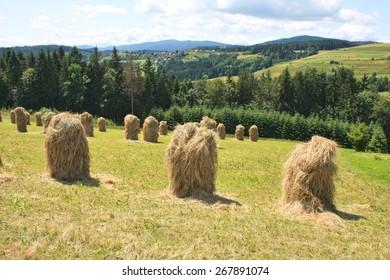 Haystacks on highland grassland. Landscape in Poland