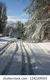 A hazardous, unplowed, curving, snow covered road with tire tracks skidding around heavy, snow laden pine branches that cover half of the road