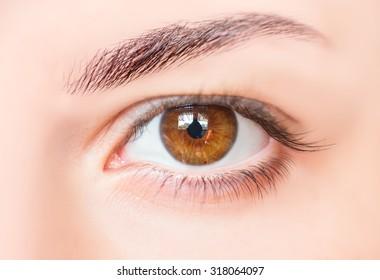 Picture of hazel eyes