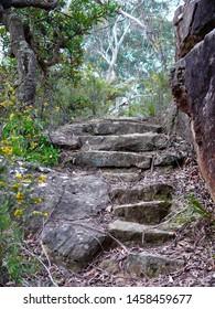 Hazelbrook, Blue Mountains, Australia. Oct 2008. Stone stairways on a bush walking trail in the Blue mountains near Terrace Falls.