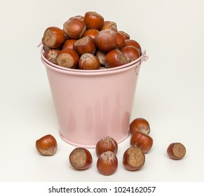 Hazelnut in a bucket