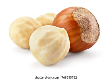 Hazelnut. Hazelnut isolated. Filbert on white background. With clipping path. Full depth of field.