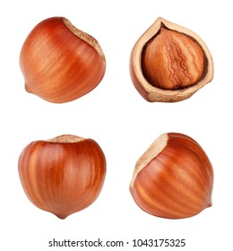 Hazelnut isolated on white background as package design elements.