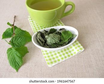 Hazelnut leaf tea with in the dehydrator dried hazel leaves