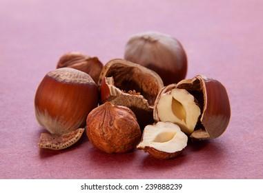 Hazelnut nut group cracked closeup
