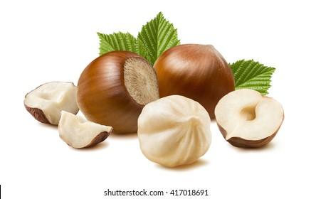 Hazelnut nut many leaves isolated on white background as package design element