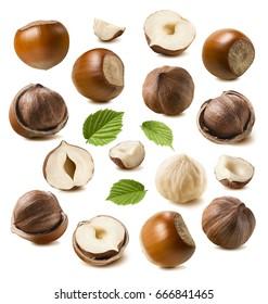 Hazelnut nut set isolated on white background as package design elements