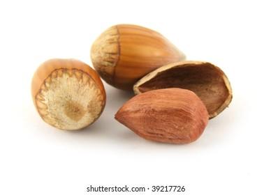 Hazelnut and it shall isolated on white background