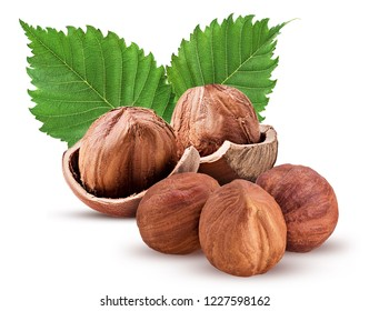 Hazelnut in shell and three peeled, with leaf. Fresh organic filbert isolated on white background. Clipping Path. Full depth of field.