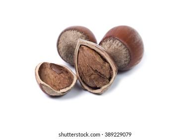 Hazelnut, hazelnut without shell