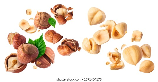 Hazelnuts crushed into pieces and green leaves frozen in the air on a white background. Creative food levitation conception. High resolution image.