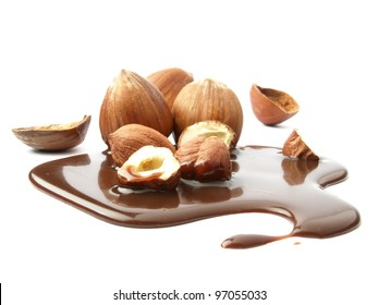 Hazelnuts dipped in melted chocolate