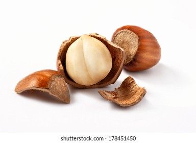 Hazelnuts, filbert on white background