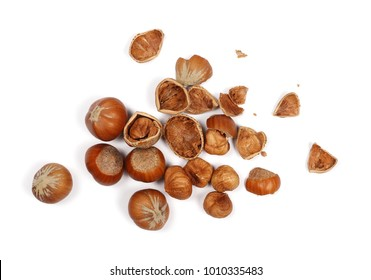 Hazelnuts isolated on white background, top view