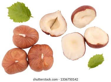 Hazelnuts isolated on white background, top view.