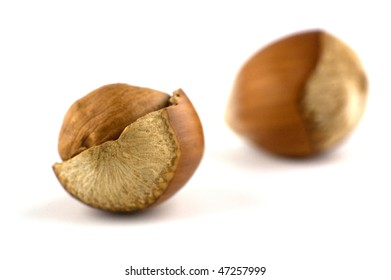 Hazelnuts isolated on a white background.