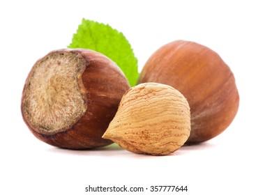 Hazelnuts and leaf isolated