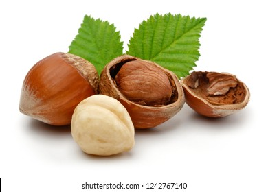 Hazelnuts and leafs isolated on white background.