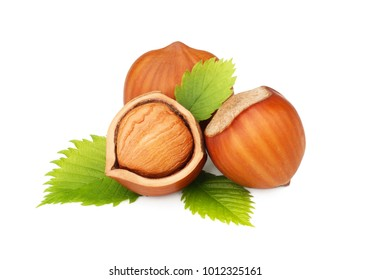 Hazelnuts with leaves isolated on the white background
