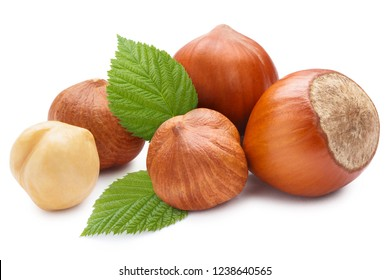 Hazelnuts with leaves, isolated on white background