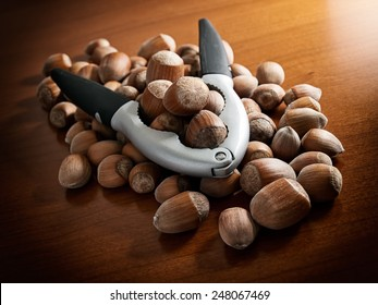 Lot of hazelnuts and pliers for crashing nutshell.
