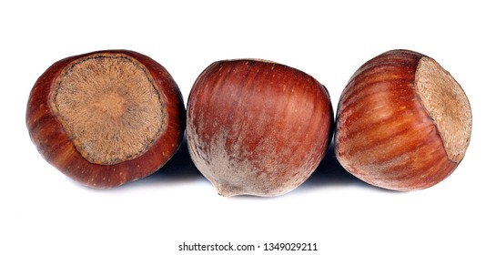 Hazelnuts with shells. Unpeeled hazelnuts isolated on white background. Full depth of field.