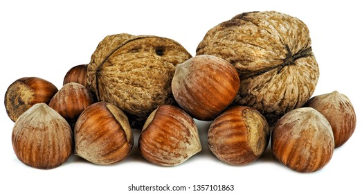 Hazelnuts and walnuts with shells. Unpeeled walnuts, hazelnuts isolated on white background. Full depth of field.
