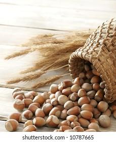 Hazelnuts and wheat