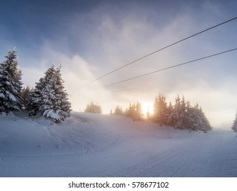 Hazy dieing sun on a ski slope with icy snow covered trees